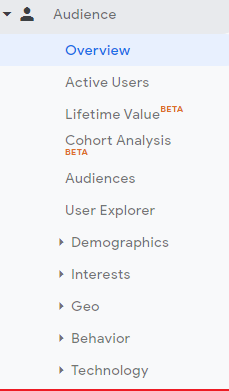 Audience-Section-Web-Analytics